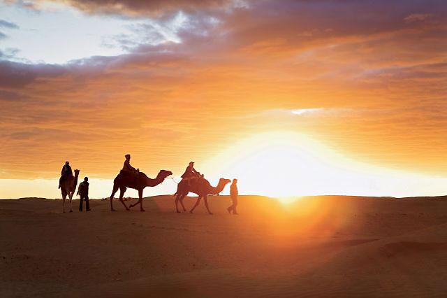 Sahara désert Ksar Ghilane Randonnée à dos de dromadaires