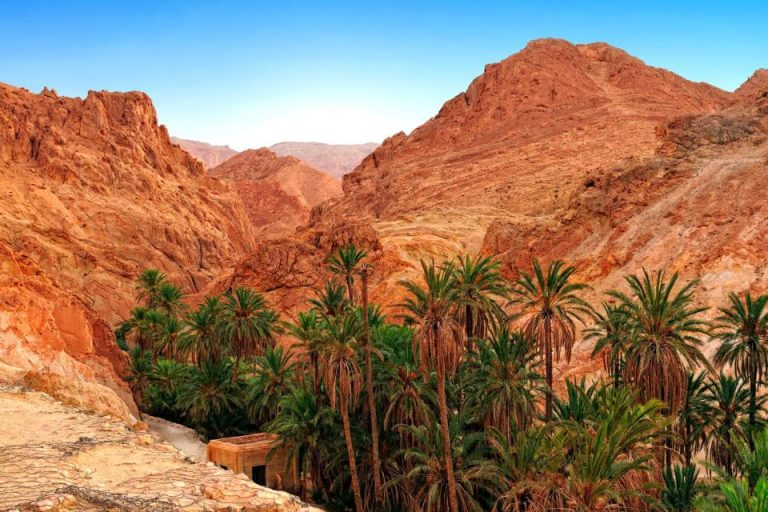 sud Tunisie désert Tunisie
